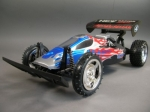 RC Auto Buggy Wild Raider 1:10
